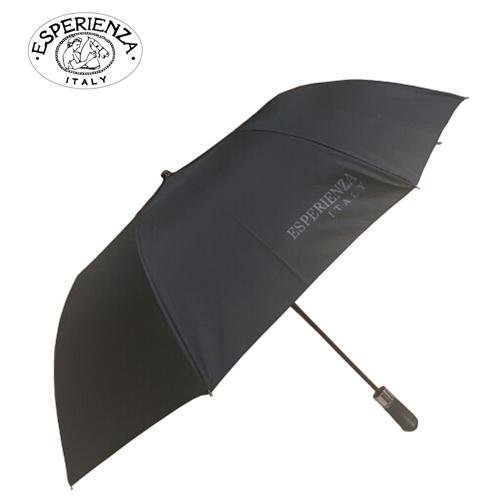 [에스페리언자]플래티넘 2단우산