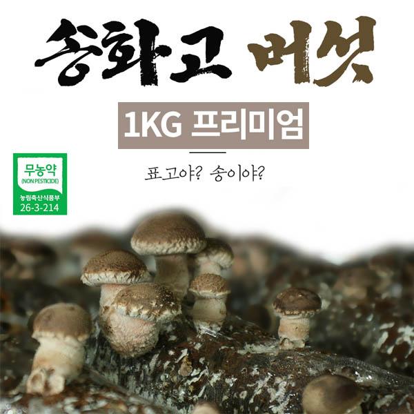 [면세]버섯돌이 송화 버섯 고급선물용 1kg