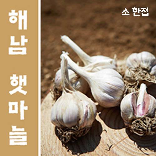 [면세]해남 늘해랑 해남마늘 소 한접
