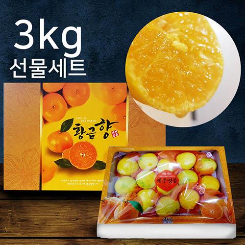 제주황금향 꼬마 3kg (13-16수 - 세트(선물용)