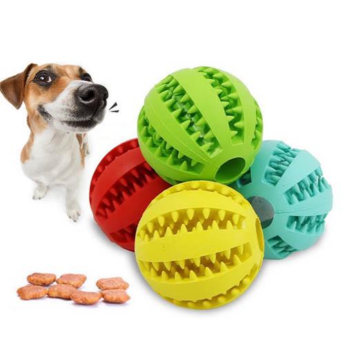 애견 소형 장난감 스낵볼 강아지 츄잉볼