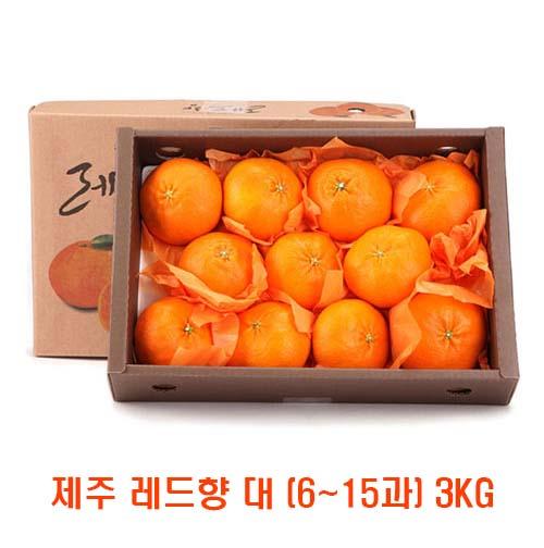 [면세]제주 레드향 대 (6~15과) 3kg