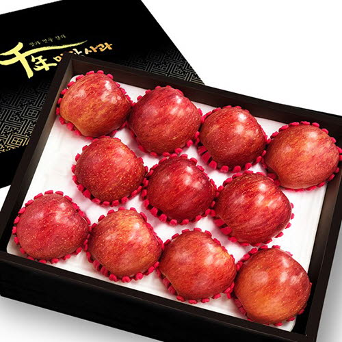 [천년미담] 프리미엄 천년미담 사과(홍로) 5kg(과수 11~13내)