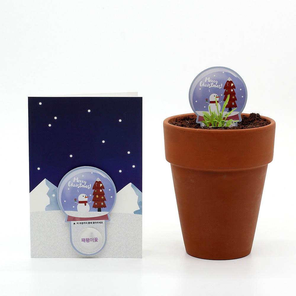 크리스마스 씨앗카드 스노우볼(패랭이꽃)