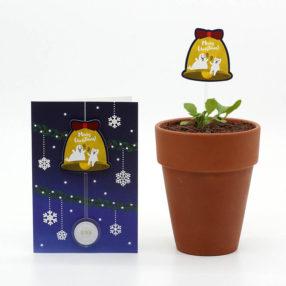 크리스마스 씨앗카드 벨(유채꽃)