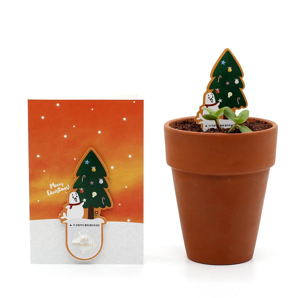 크리스마스 씨앗카드 트리(해바라기)