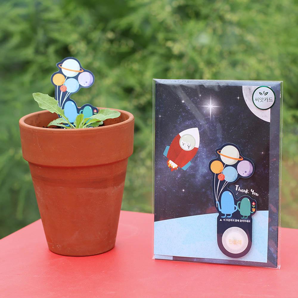 우주여행 씨앗카드 민들레