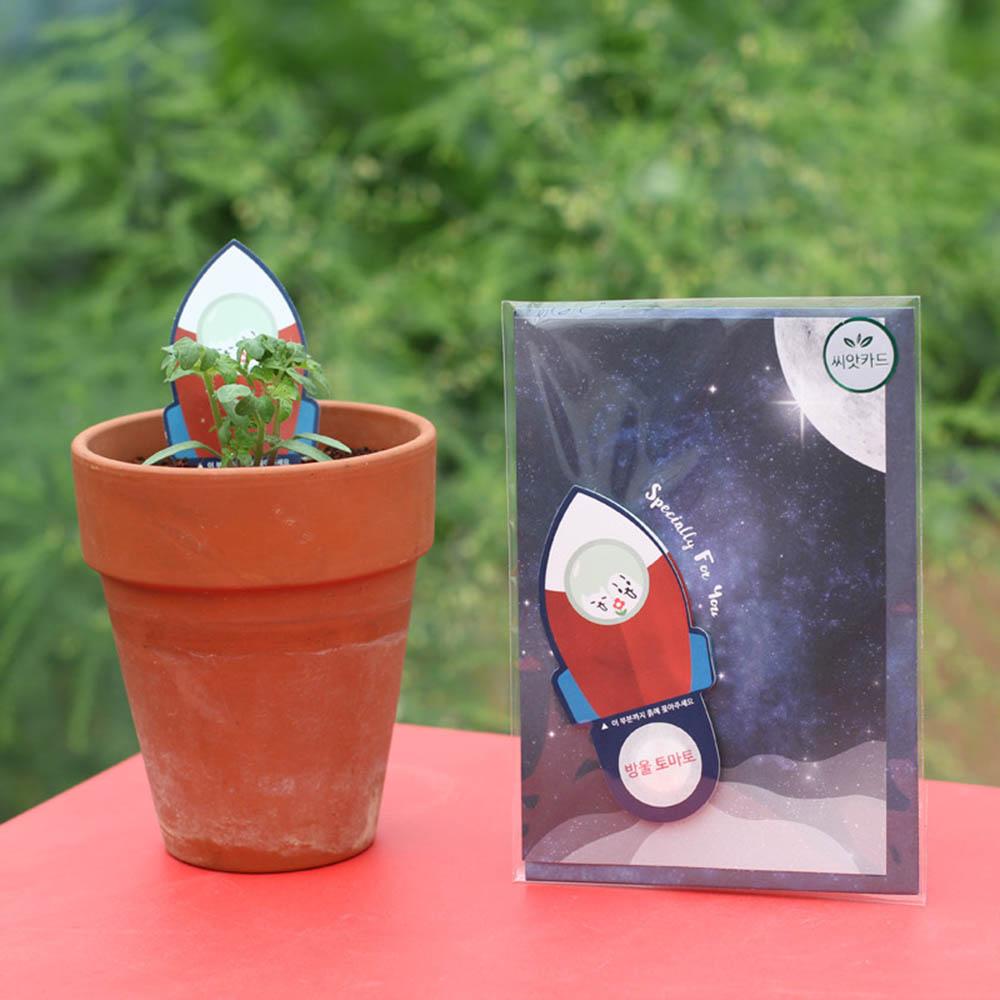 우주여행 씨앗카드 방울토마토