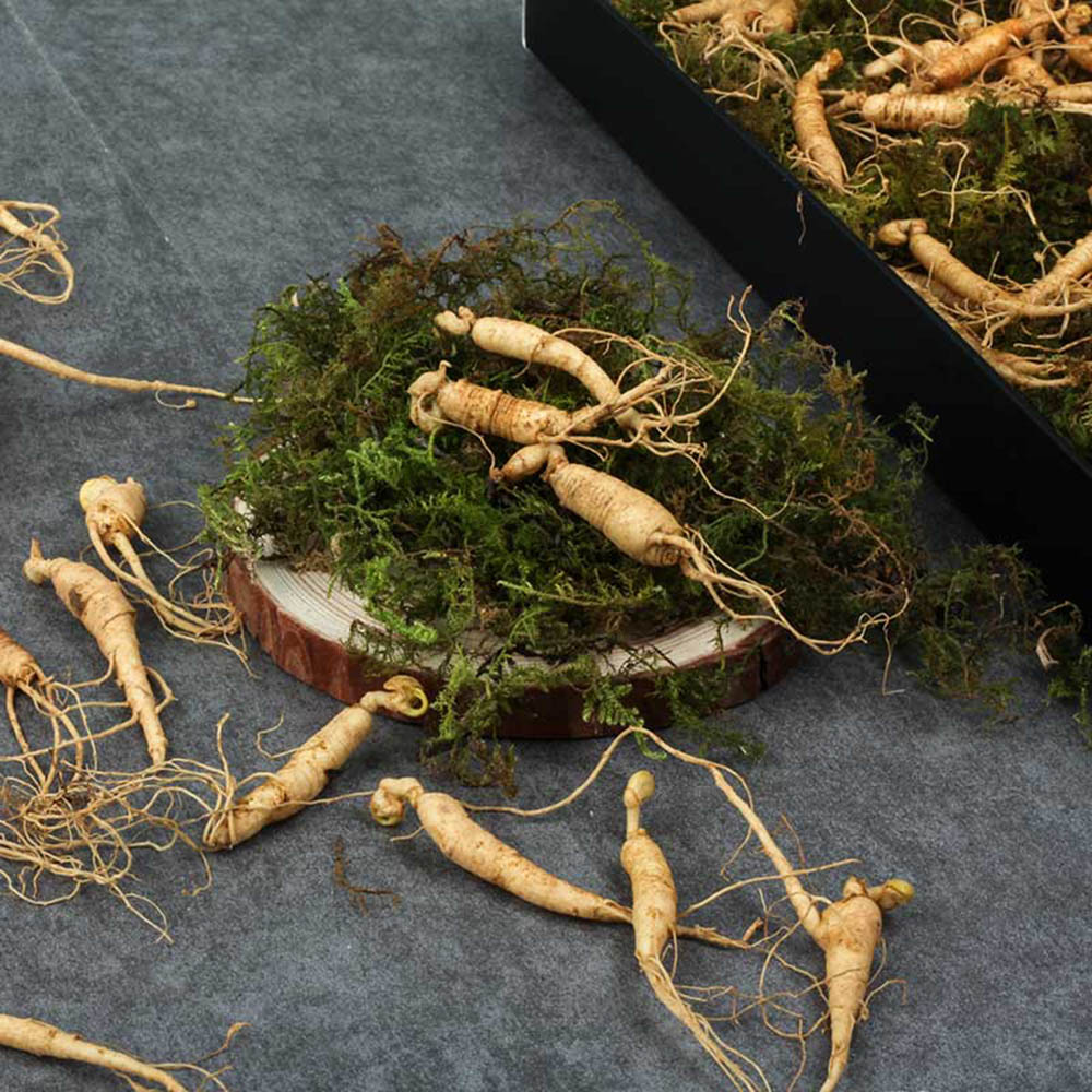 [선물포장]편하게 먹는 강원도 토종 못난이 장뇌삼 산양산삼 60g [5년~6년근 25뿌리~50뿌리]