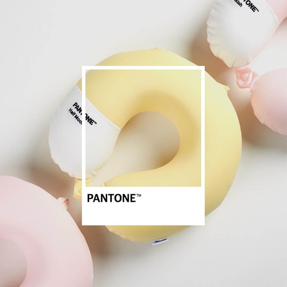 팬톤 감성 피크닉 목베개