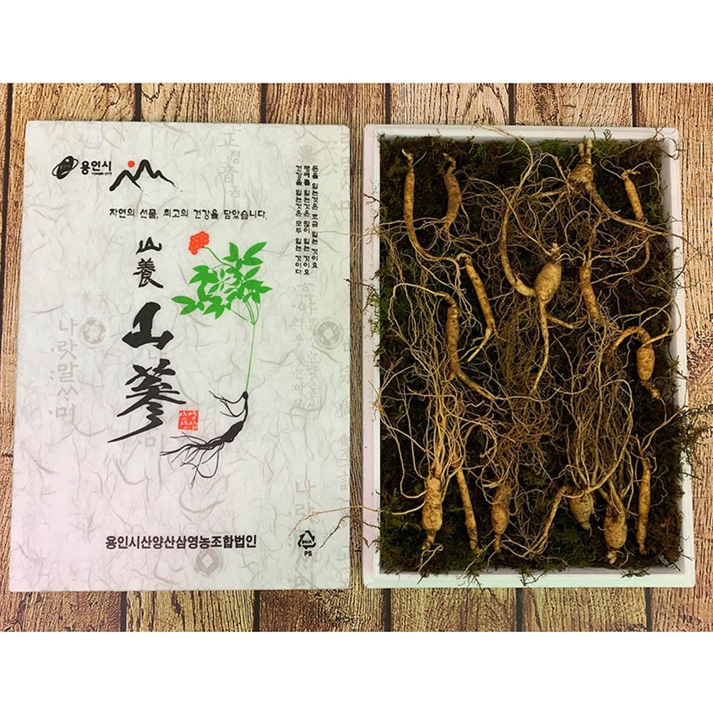 다온 삼이다 산삼 (7년근 산양산삼 15뿌리 패키지)/고급패키지