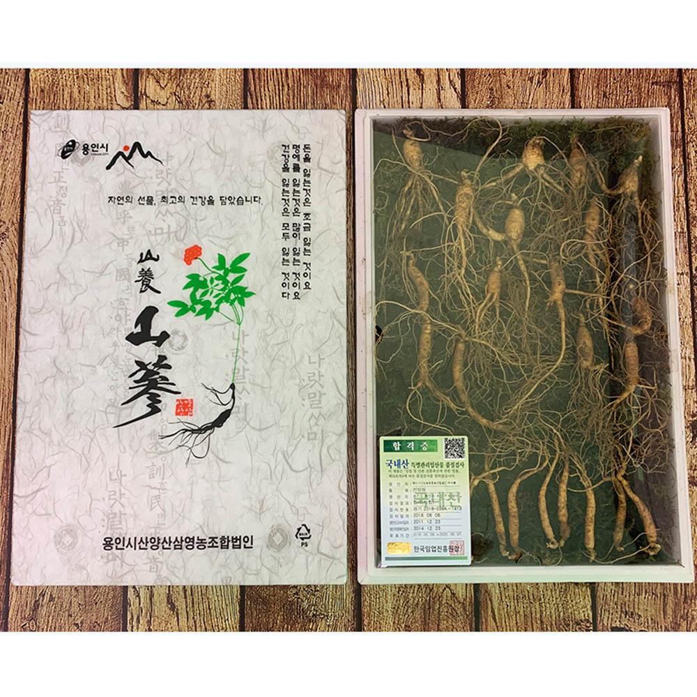 다온 삼이다 산삼 (7년근 산양산삼 25뿌리 패키지)/고급패키지