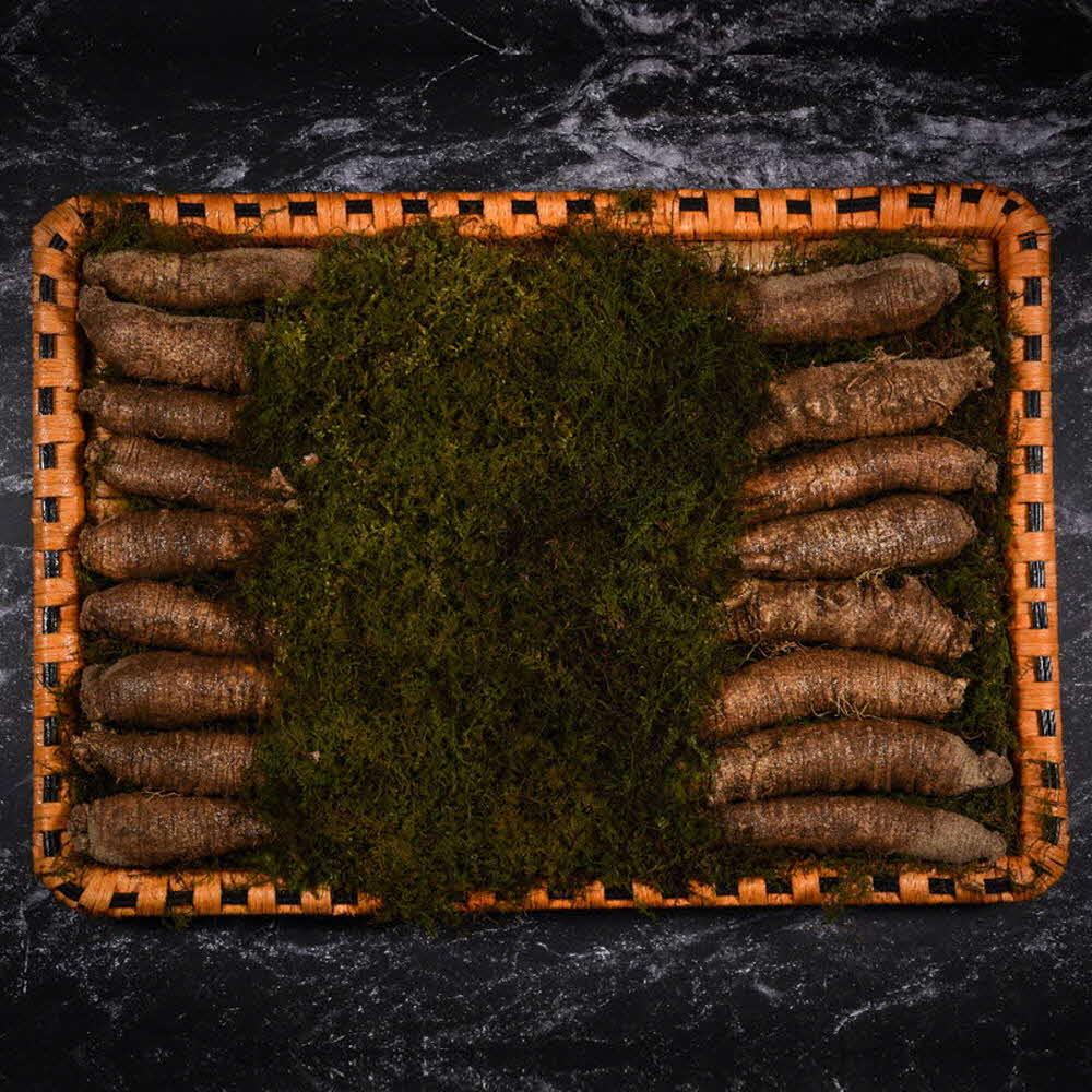 자연맛집 더덕 프리미엄 특상 선물세트(더덕 특상 1kg) / 고급포장