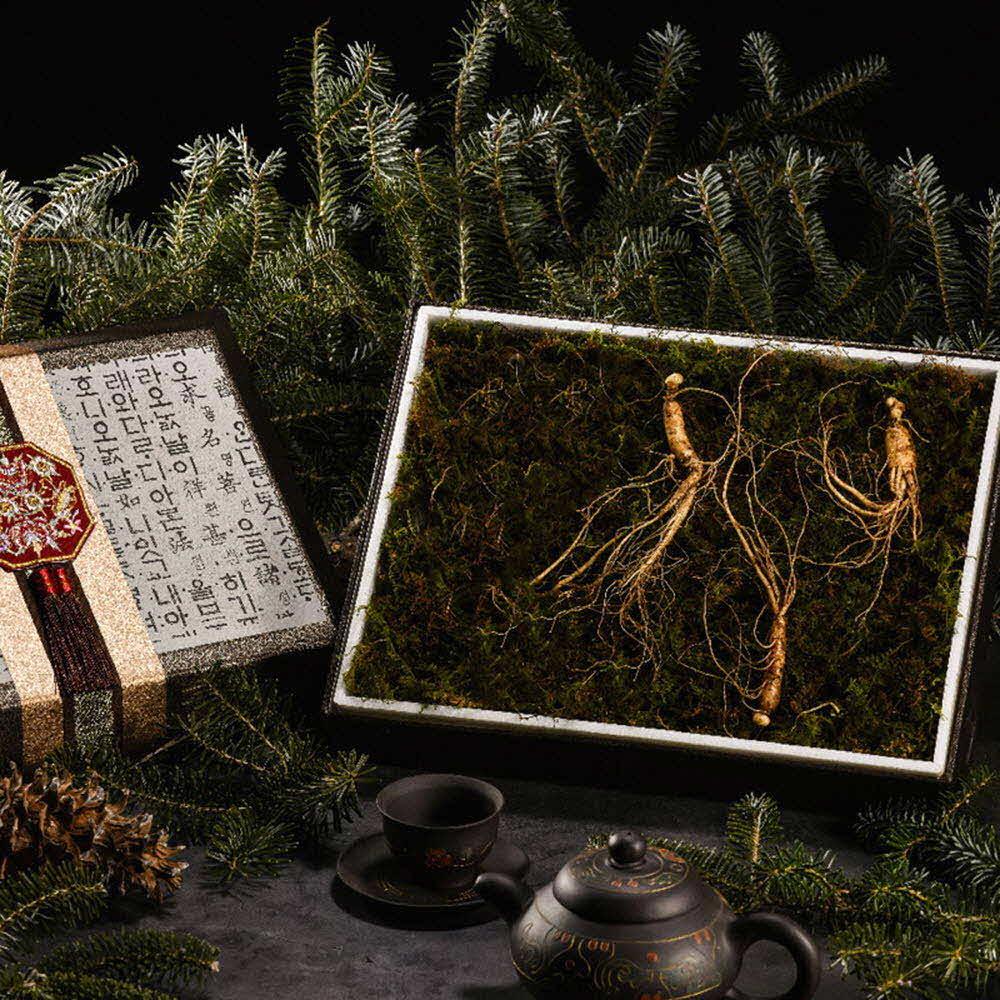 자연맛집 강원도 토종 산양삼 선물세트 3뿌리 (5년~6년근) / 고급포장