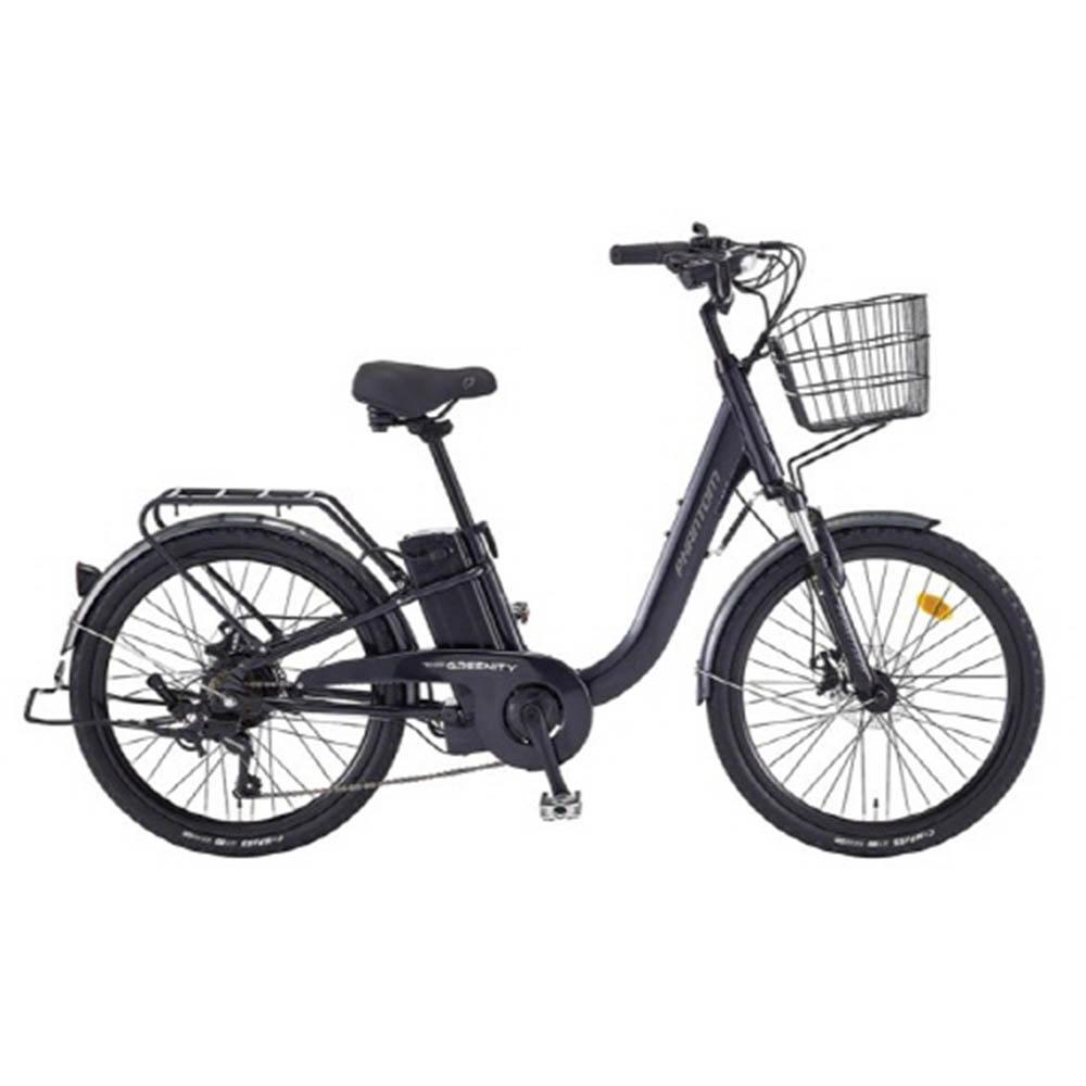 [삼천리자전거] 전기자전거 그리니티 7단 24인치