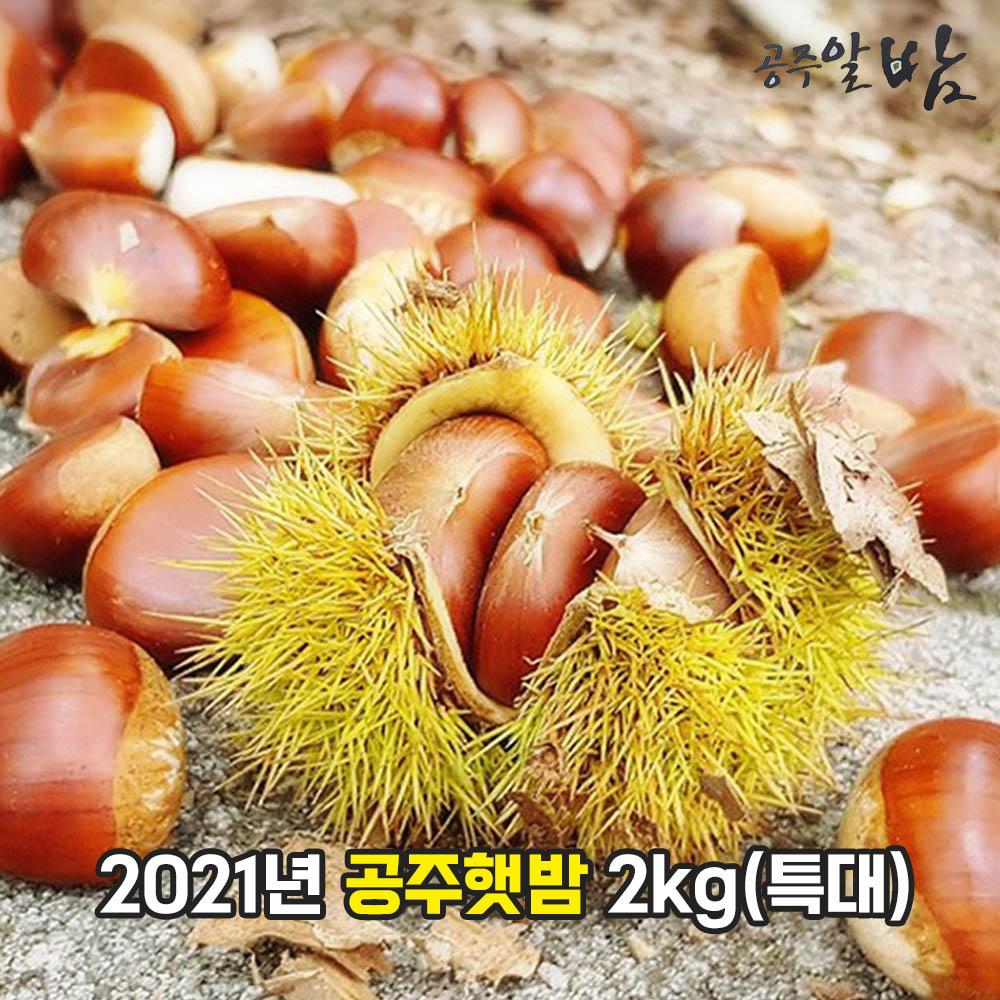 2021년 공주햇밤 2kg(특대)